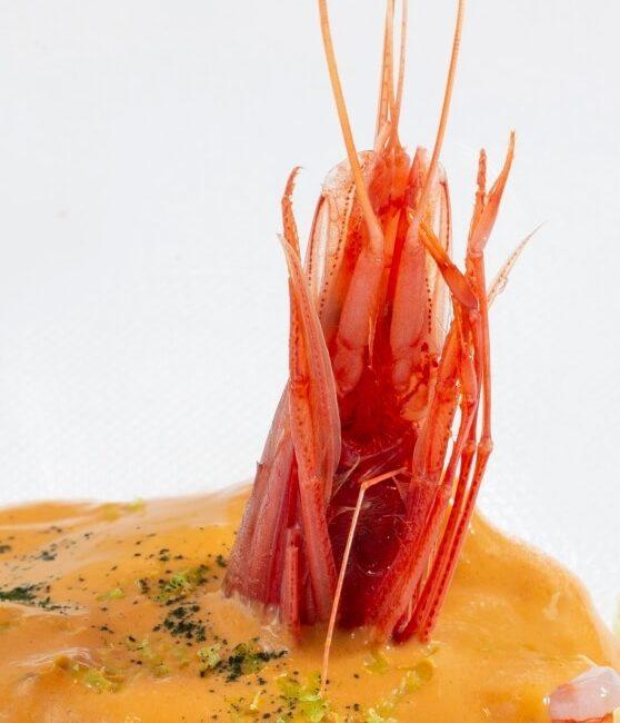 Cocktail di gamberi dell'Osteria Il Moro Trapani